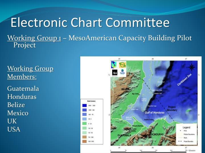 Electronic Chart Committee