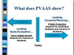 what does pvaas show
