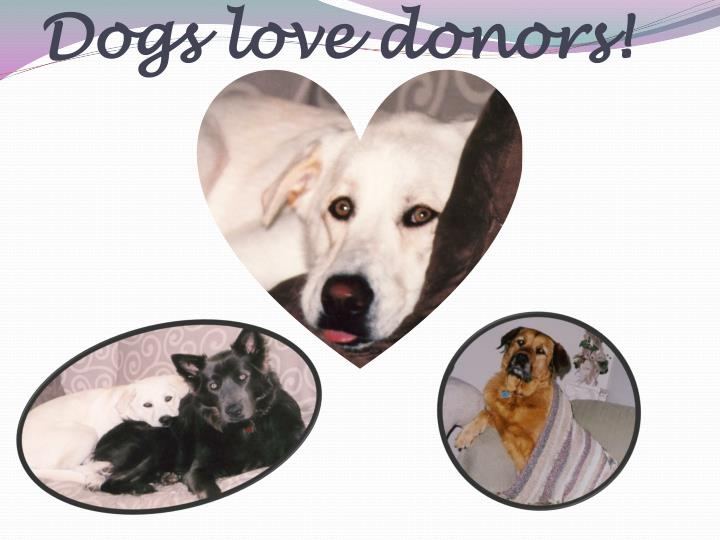 Dogs love donors!