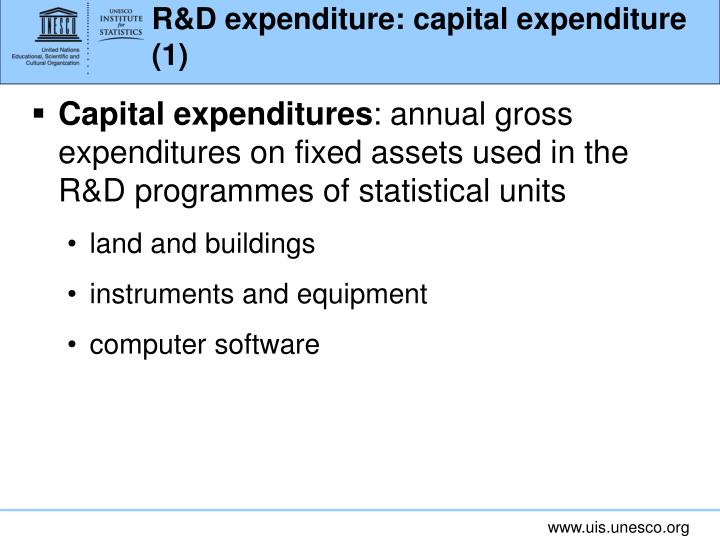 R&D expenditure: capital expenditure (1)