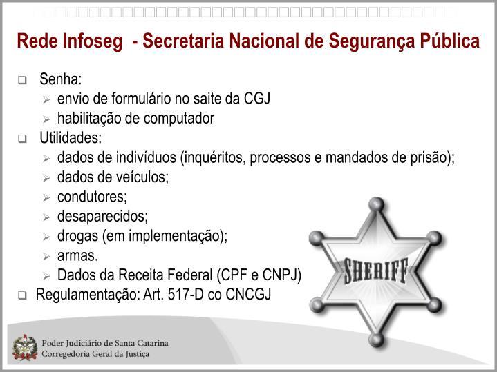 Rede Infoseg  - Secretaria Nacional de Segurança Pública