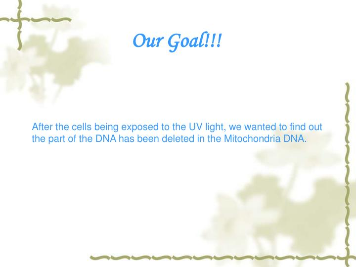 Our Goal!!!