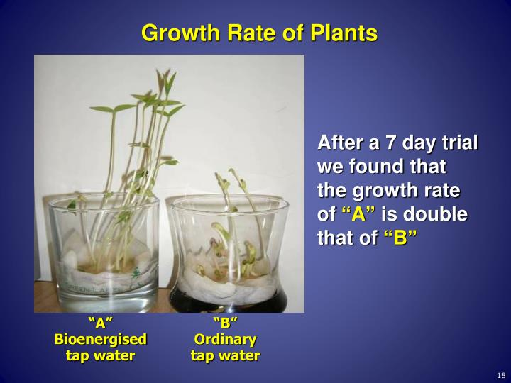 Growth Rate of Plants