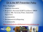 dv the wp prevention policy