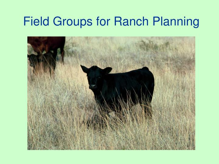 Field groups for ranch planning
