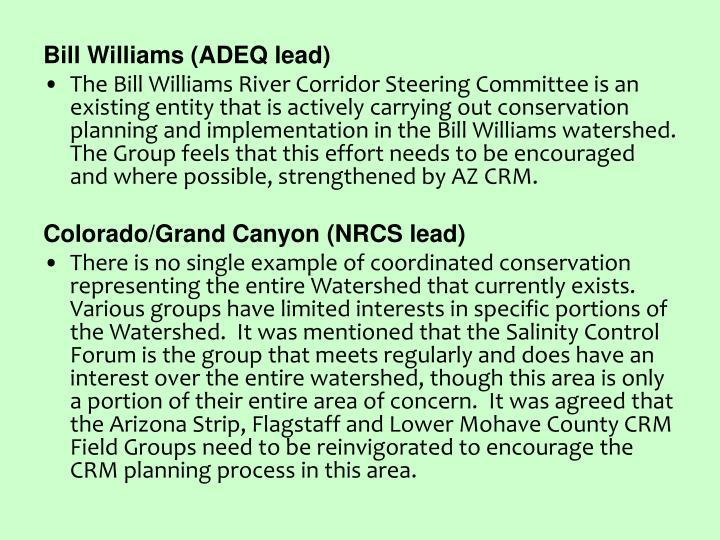 Bill Williams (ADEQ lead)