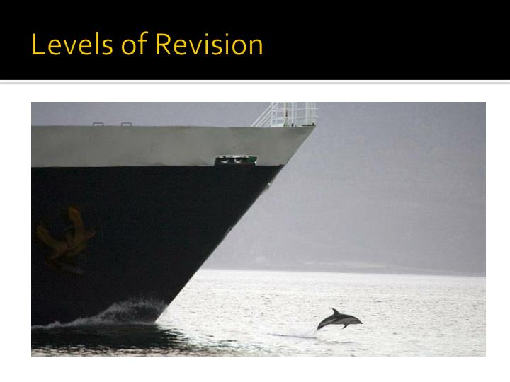 Levels of Revision