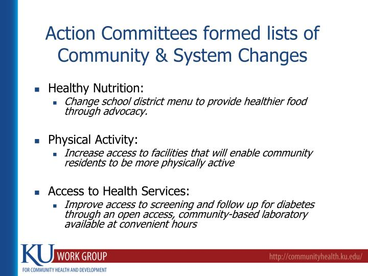 Action Committees formed lists of Community & System Changes