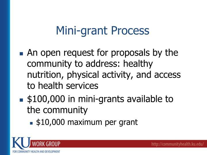 Mini-grant Process