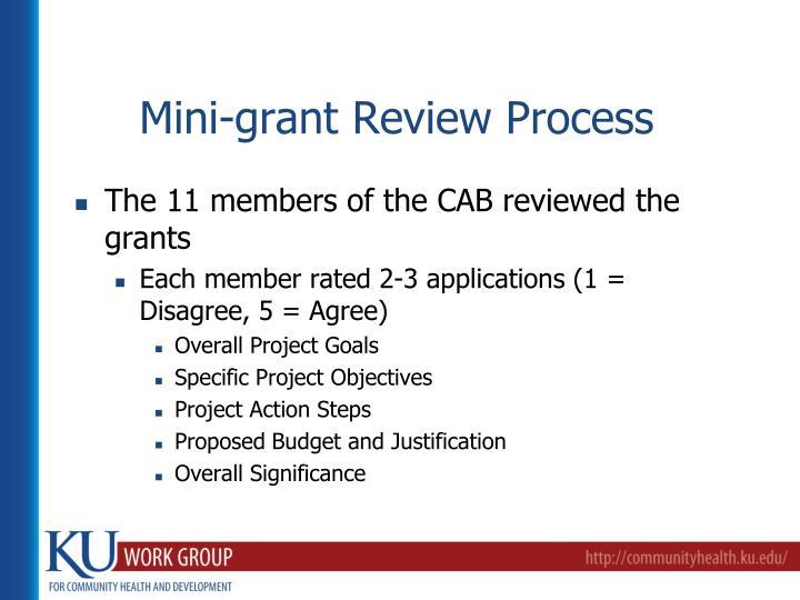 Mini-grant Review Process