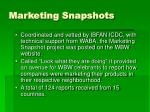 marketing snapshots