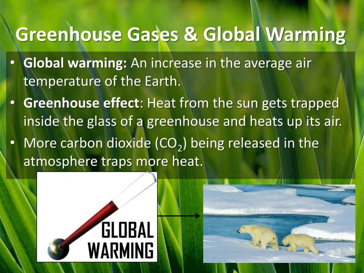 global warming essay greenhouse gases Green house effect and global warming essay 4 (250 words) greenhouse effect is the process on the earth planet caused by the gases trapping heat and energy from the various sources such gases are called as green house gas like co2, methane, nitrogen oxide, cfcs, ozone, etc trap heat and warm the earth surface.