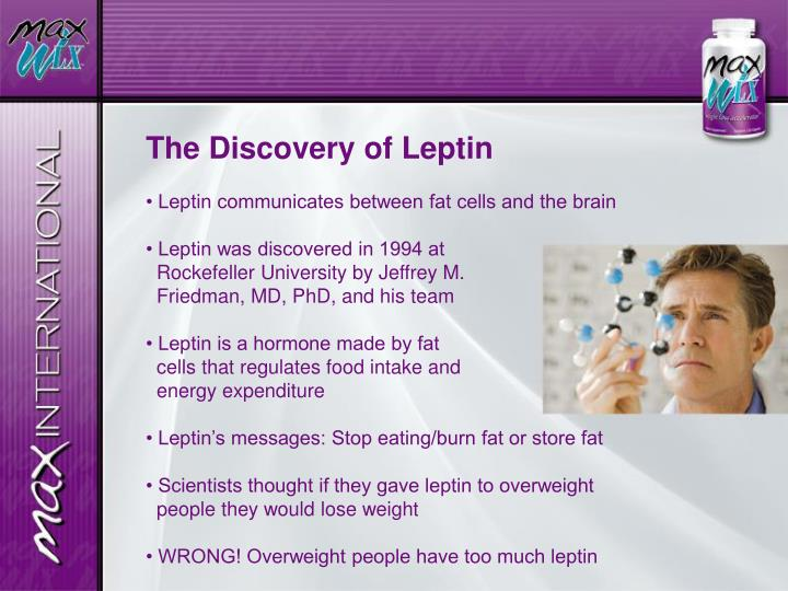 The Discovery of Leptin