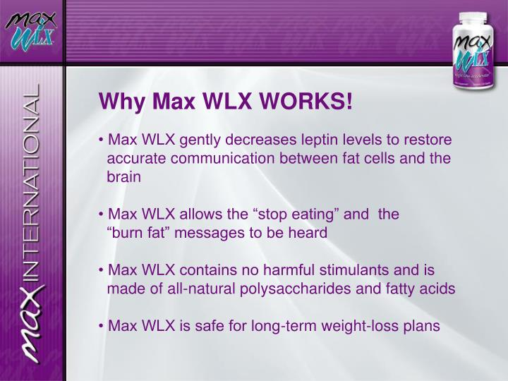 Why Max WLX WORKS!