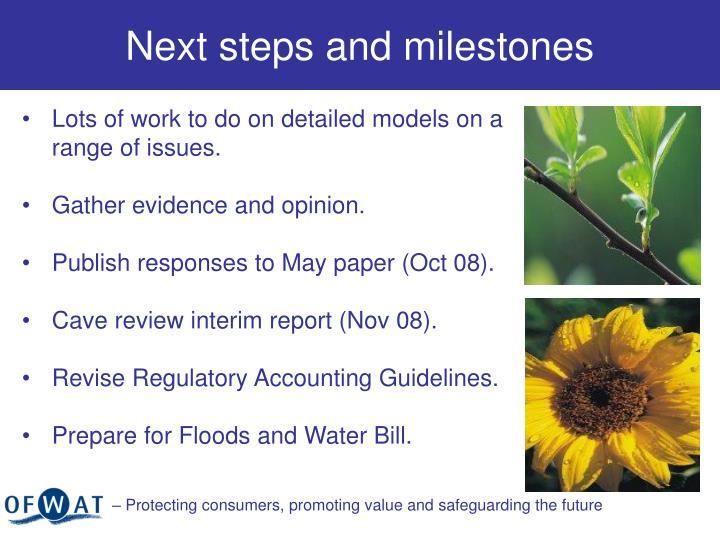 Next steps and milestones