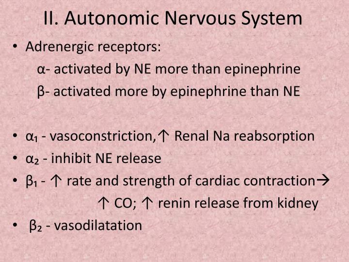 II. Autonomic Nervous System
