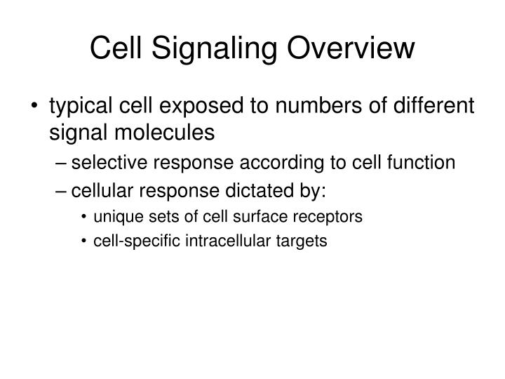 Cell Signaling Overview
