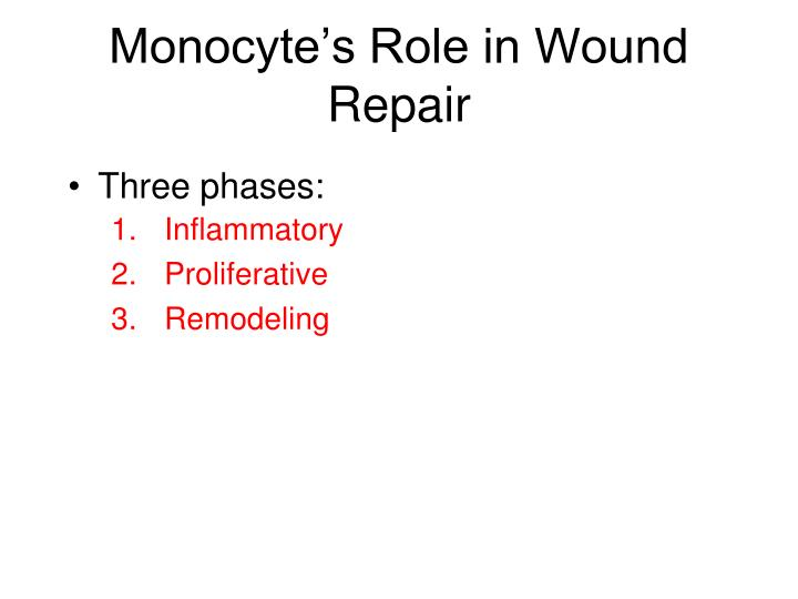 Monocyte's Role in Wound Repair
