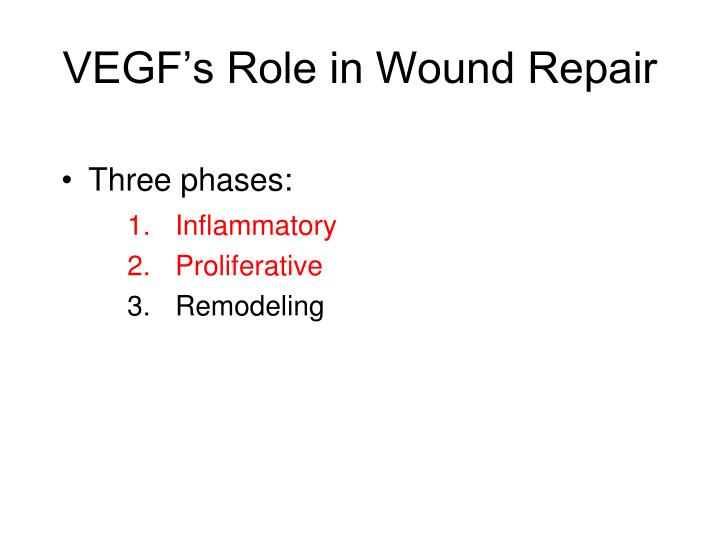VEGF's Role in Wound Repair