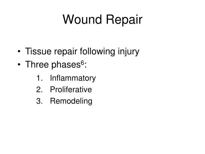 Wound Repair