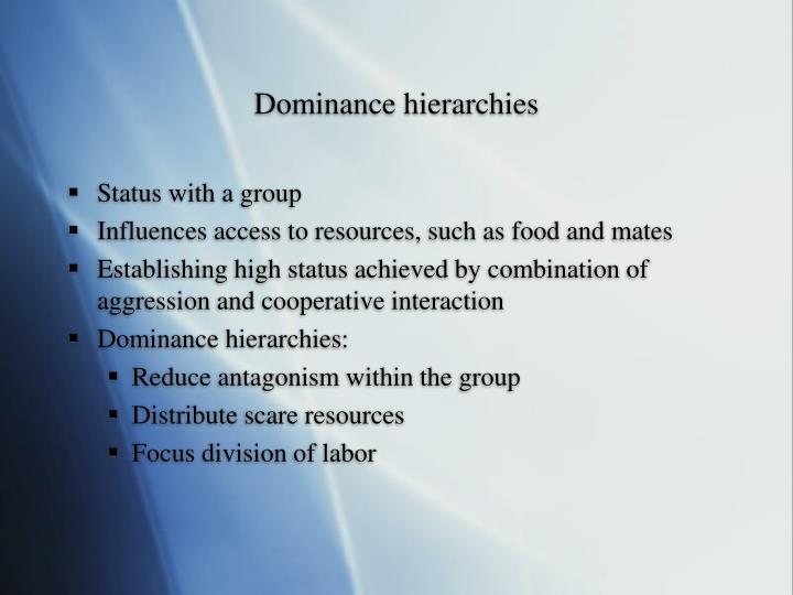 Dominance hierarchies