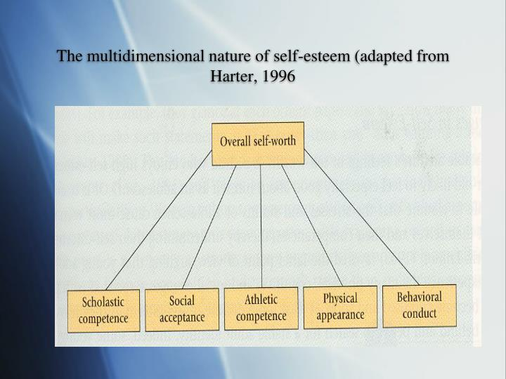 The multidimensional nature of self-esteem (adapted from Harter, 1996