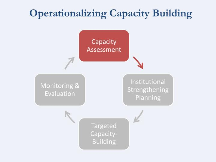 Operationalizing Capacity Building