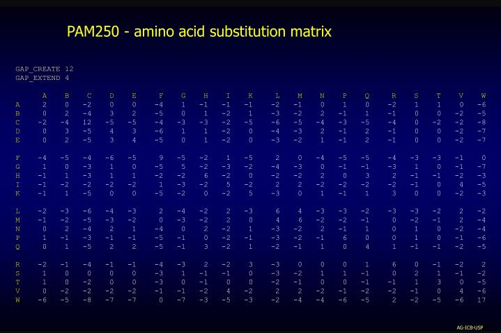 PAM250 - amino acid substitution matrix