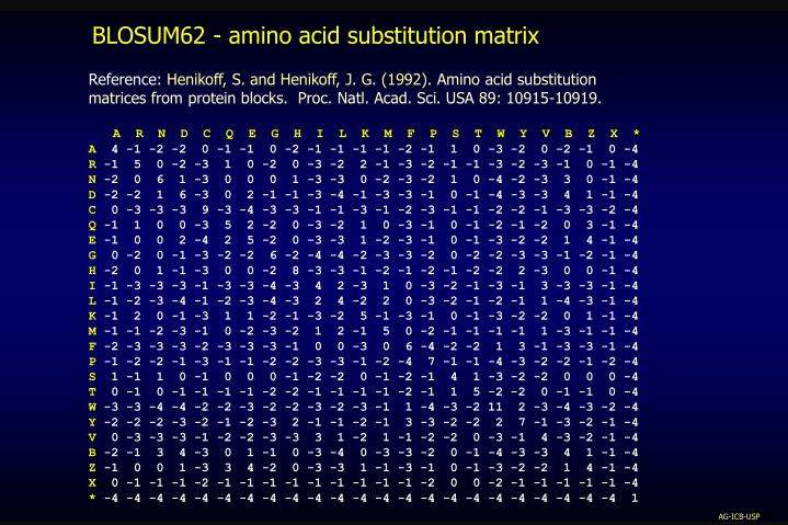 BLOSUM62 - amino acid substitution matrix