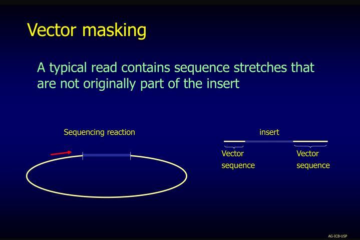 Vector masking