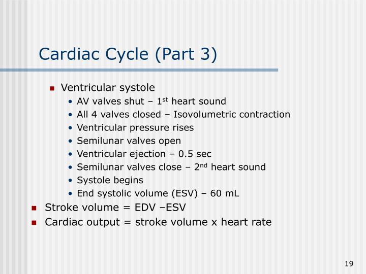 Ventricular systole