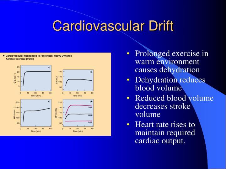 Cardiovascular Drift