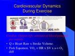 cardiovascular dynamics during exercise