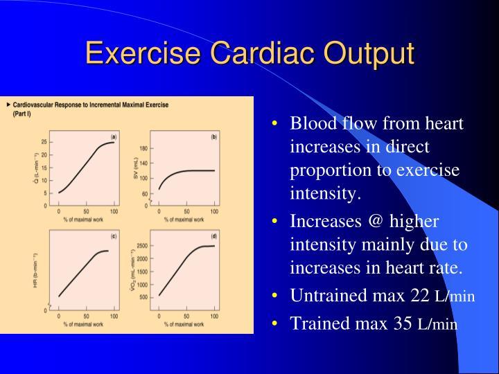 Exercise Cardiac Output