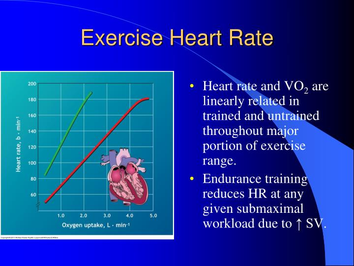 Exercise Heart Rate