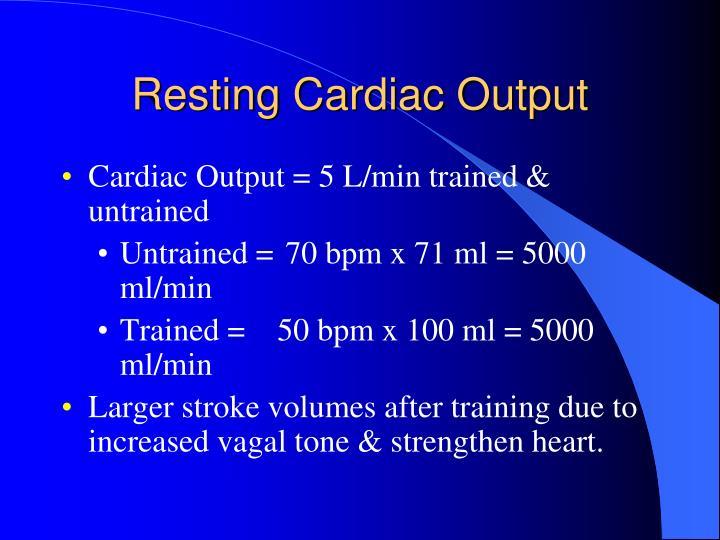 Resting Cardiac Output