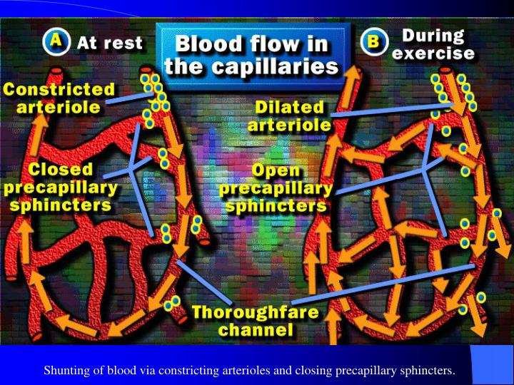 Shunting of blood via constricting arterioles and closing precapillary sphincters.