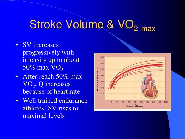 Stroke Volume & VO