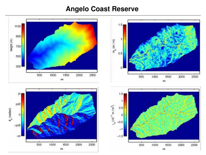 Angelo Coast Reserve