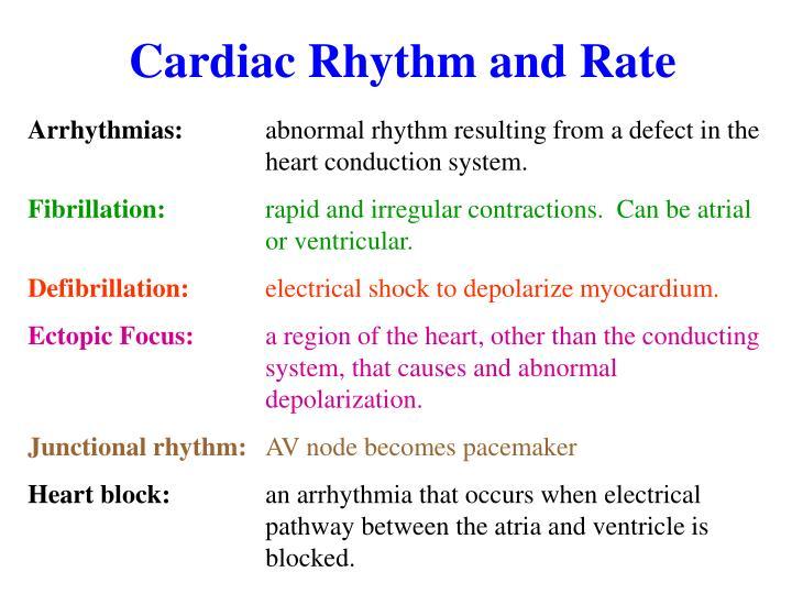 Cardiac Rhythm and Rate