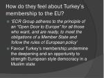 how do they feel about turkey s membership to the eu