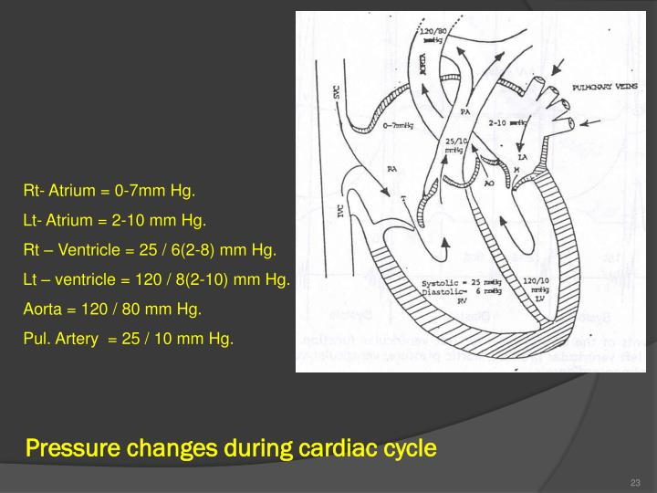 Pressure changes during cardiac cycle