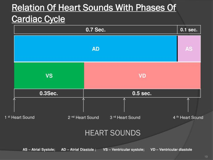 Relation Of Heart Sounds With Phases Of Cardiac Cycle