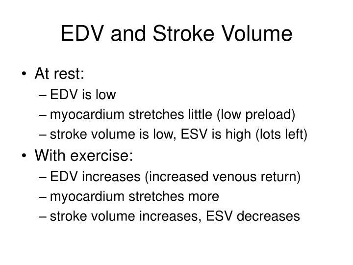EDV and Stroke Volume