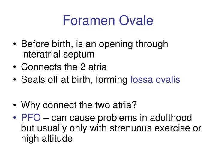 Foramen Ovale