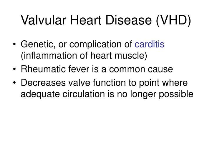 Valvular Heart Disease (VHD)