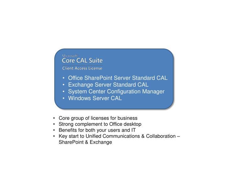 Office SharePoint Server Standard CAL