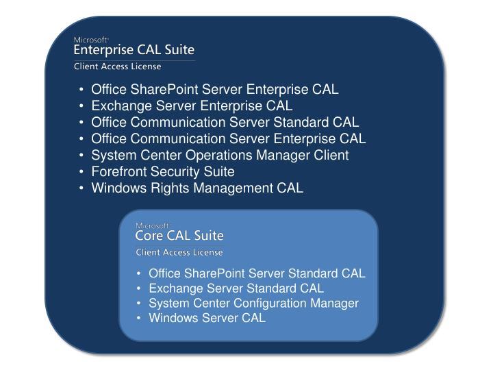 Office SharePoint Server Enterprise CAL