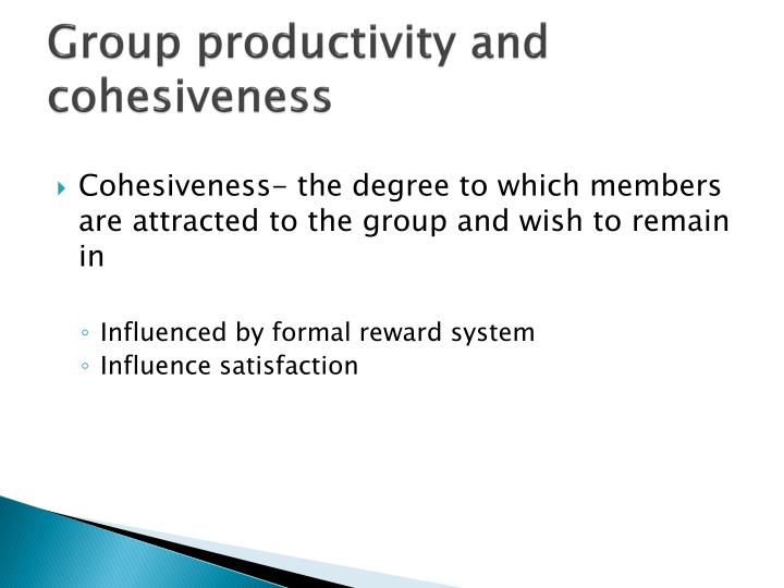 Group productivity and cohesiveness