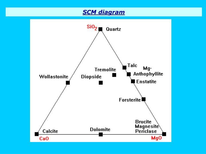 SCM diagram